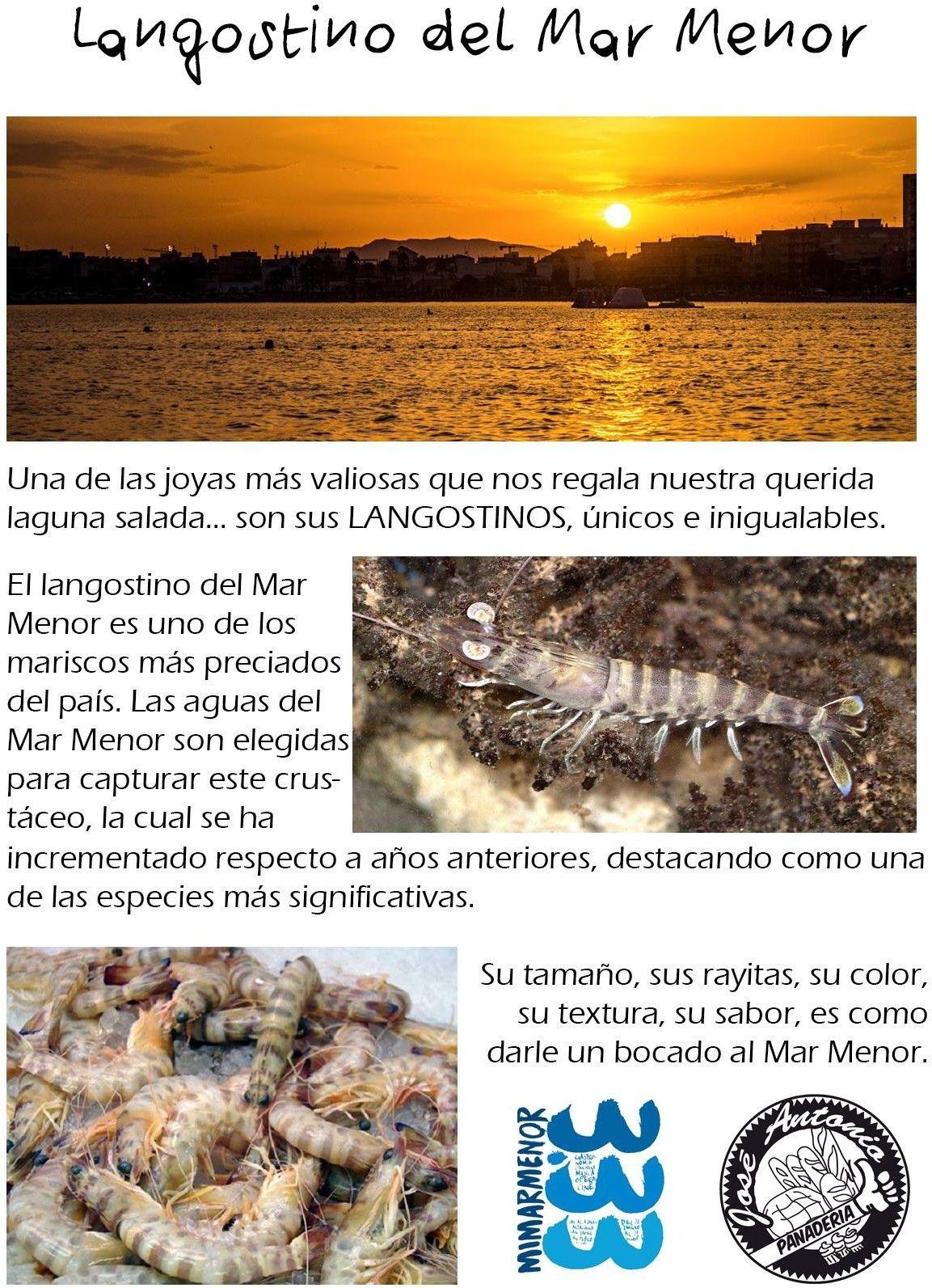 El Langostino Dulce del Mar Menor2