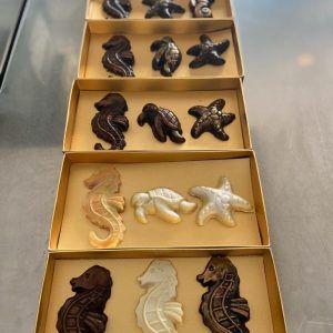 Animales marinos cajas
